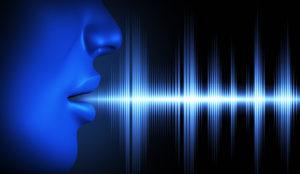 rozpoznanie hlasu