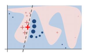 LIME_metoda_vysvetlenie